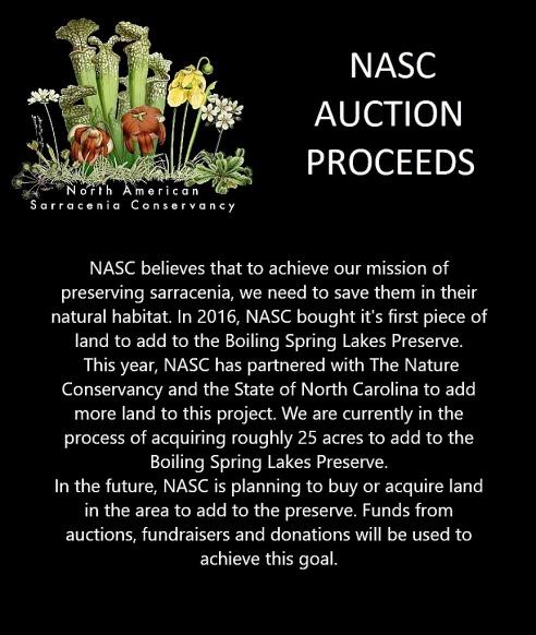 Auction Proceeds-auction-proceeds-2-jpg