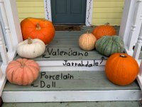 Pumpkin Names.jpg